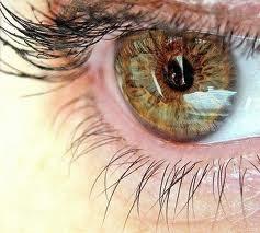 Уникальные советы по улучшению остроты зрения