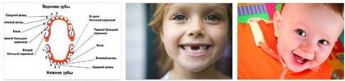 молочные зубы ребенка